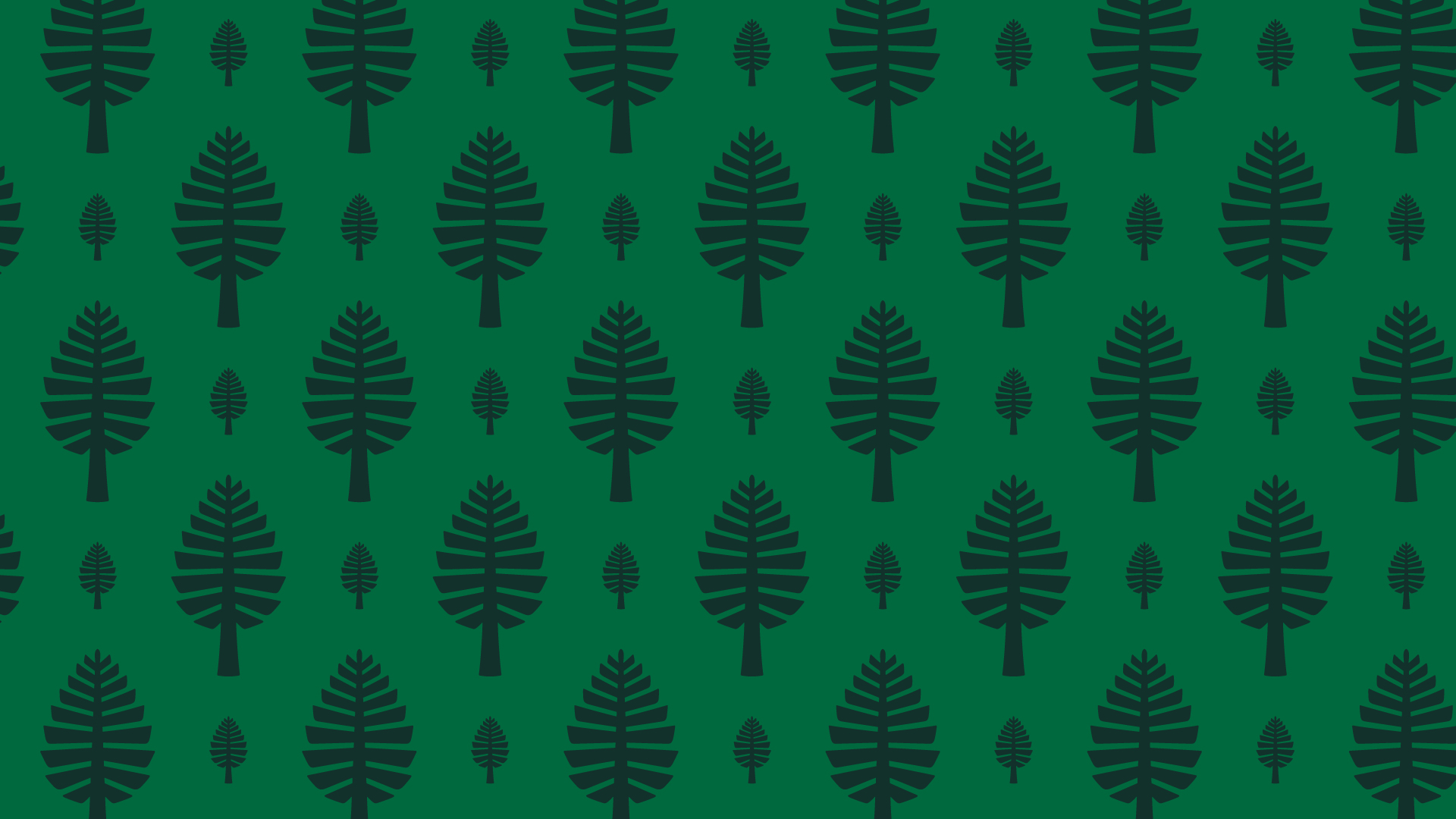 Lone Pine Zoom Background